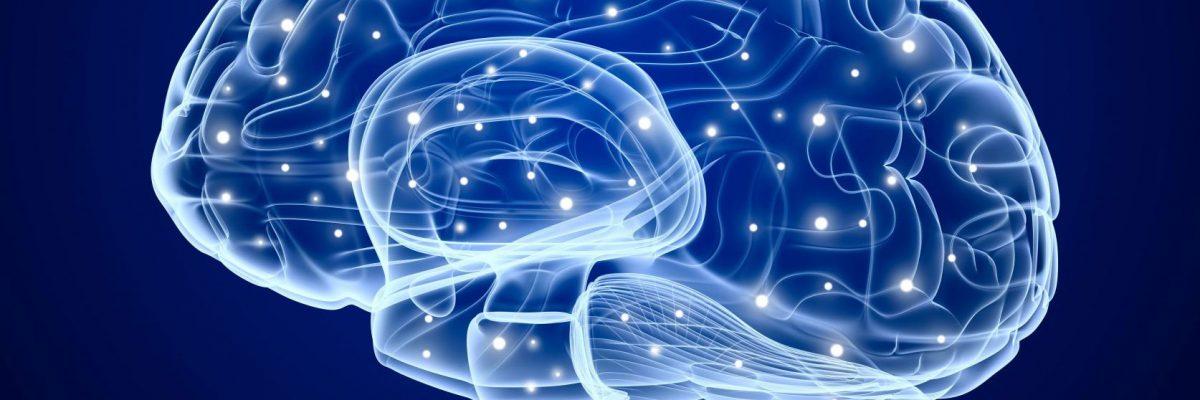Migrena je bolest mozga